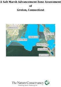 Icon of Groton Salt Marsh Advancement Zone Assessment Small
