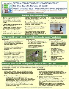 Icon of ECCD Canada Geese Fact Sheet