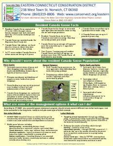 Icon of ECCD Canada Geese Fact Sheet