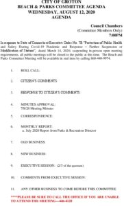 Icon of Beach And Parks Committee Agenda August 2020