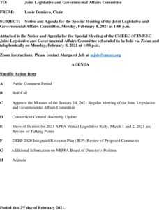 Special Legislative And Governmental Affairs Committee Agenda 02-08-2021